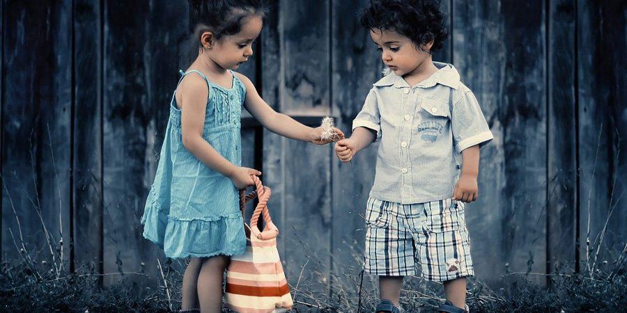 une petite fille qui partage une fleur avec un petit garçon